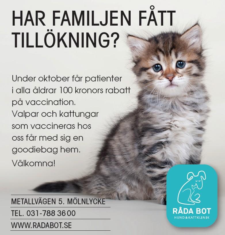 100 kronors rabatt på vaccination